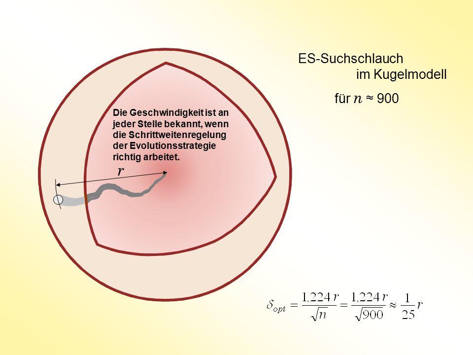 ES-Suchschlauch im Kugelmodell für n ≈ 900 r Die Geschwindigkeit ist an jeder Stelle bekannt, wenn die Schrittweitenregelung der Evolutionsstrategie r