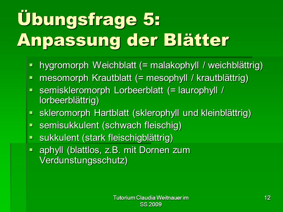 Tutorium Claudia Weitnauer im SS 2009 12 Übungsfrage 5: Anpassung der Blätter  hygromorph Weichblatt (= malakophyll / weichblättrig)  mesomorph Krau