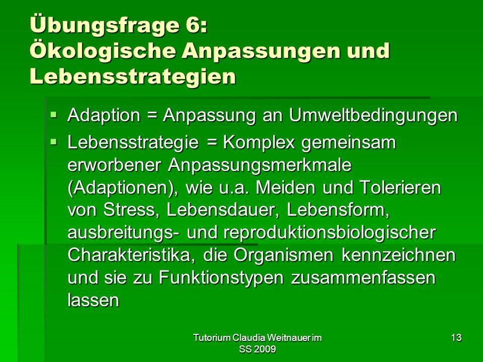 Tutorium Claudia Weitnauer im SS 2009 13 Übungsfrage 6: Ökologische Anpassungen und Lebensstrategien  Adaption = Anpassung an Umweltbedingungen  Leb