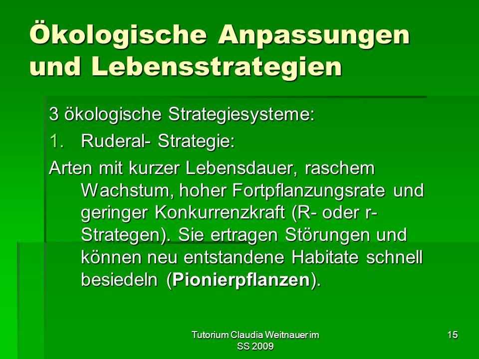 Tutorium Claudia Weitnauer im SS 2009 15 Ökologische Anpassungen und Lebensstrategien 3 ökologische Strategiesysteme: 1.Ruderal- Strategie: Arten mit