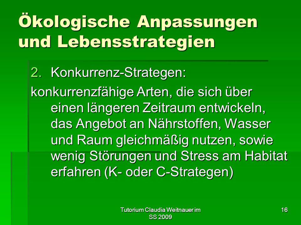 Tutorium Claudia Weitnauer im SS 2009 16 Ökologische Anpassungen und Lebensstrategien 2.Konkurrenz-Strategen: konkurrenzfähige Arten, die sich über ei