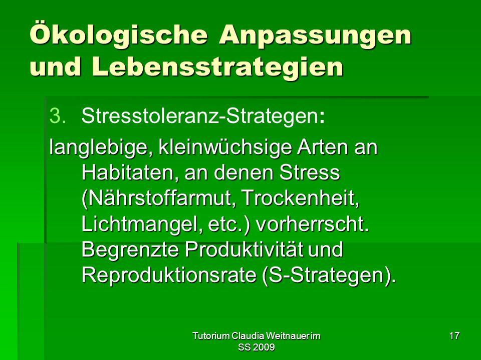 Tutorium Claudia Weitnauer im SS 2009 17 Ökologische Anpassungen und Lebensstrategien 3. 3.Stresstoleranz-Strategen: langlebige, kleinwüchsige Arten a