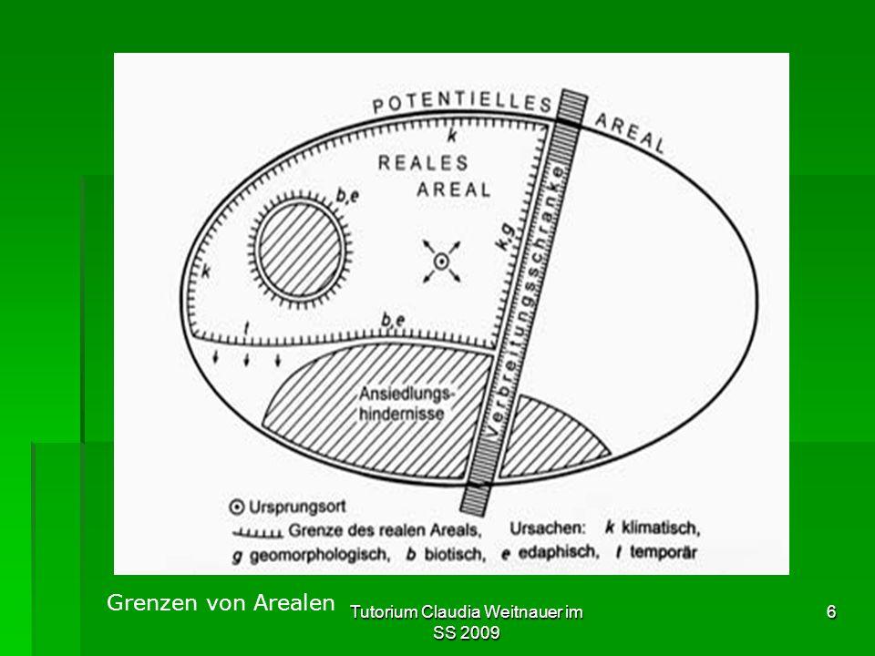 Tutorium Claudia Weitnauer im SS 2009 6 Grenzen von Arealen