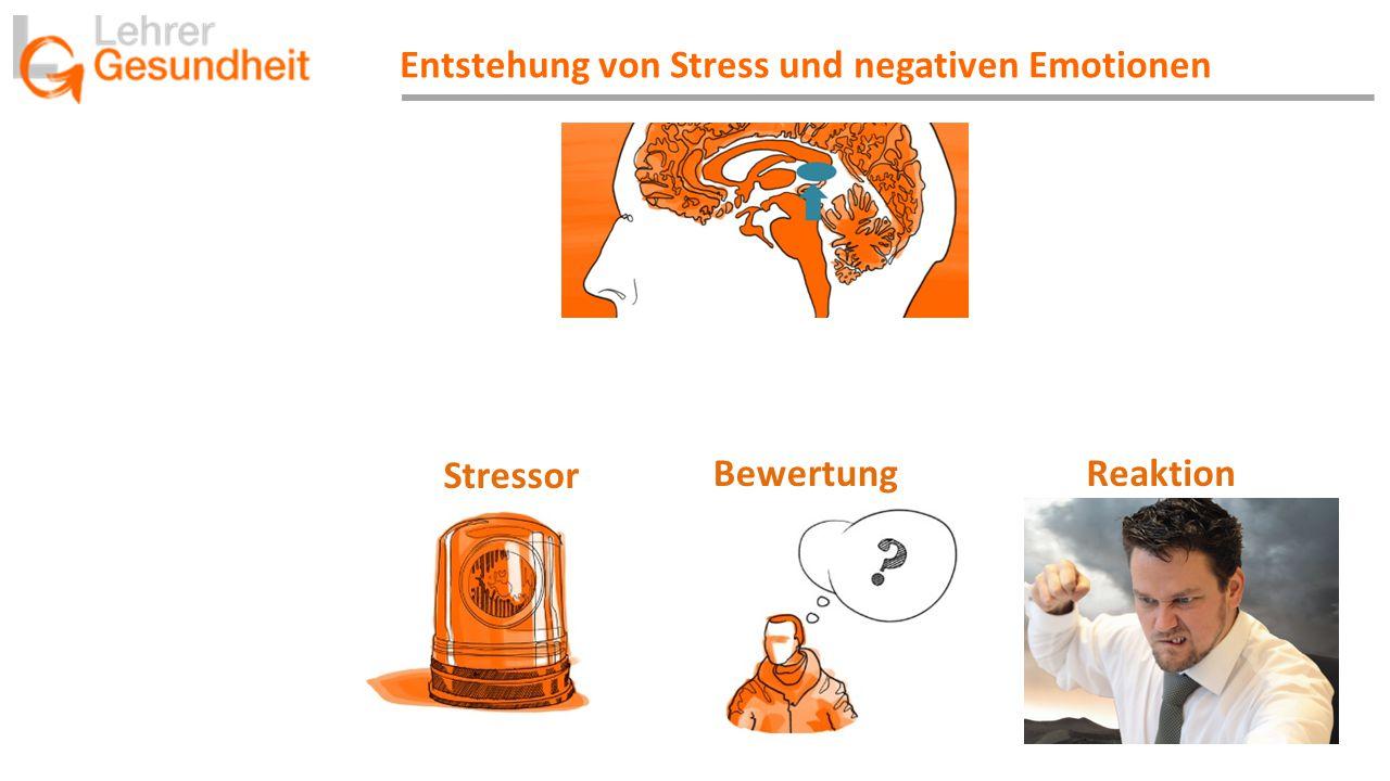 Entstehung von Stress und negativen Emotionen Stressor BewertungReaktion