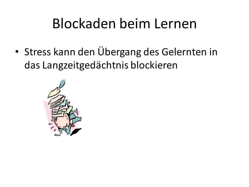 Blockaden beim Lernen Stress kann den Übergang des Gelernten in das Langzeitgedächtnis blockieren