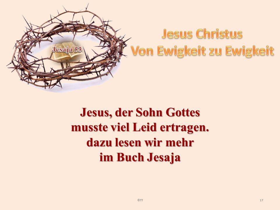 17©TT Jesus, der Sohn Gottes musste viel Leid ertragen. dazu lesen wir mehr im Buch Jesaja