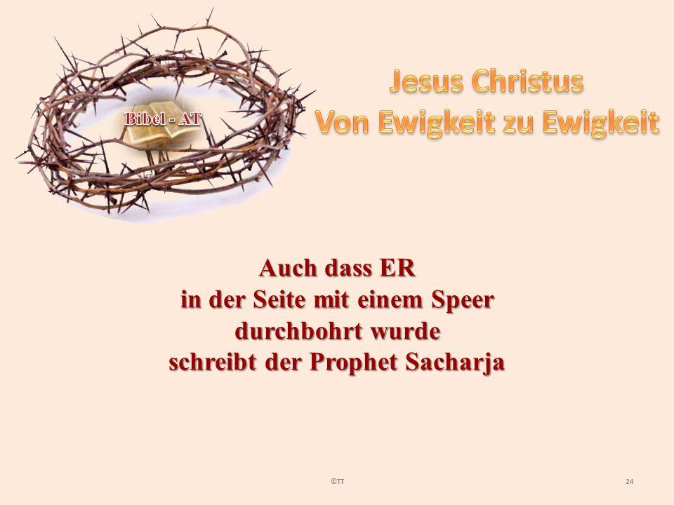 24©TT Auch dass ER in der Seite mit einem Speer durchbohrt wurde schreibt der Prophet Sacharja