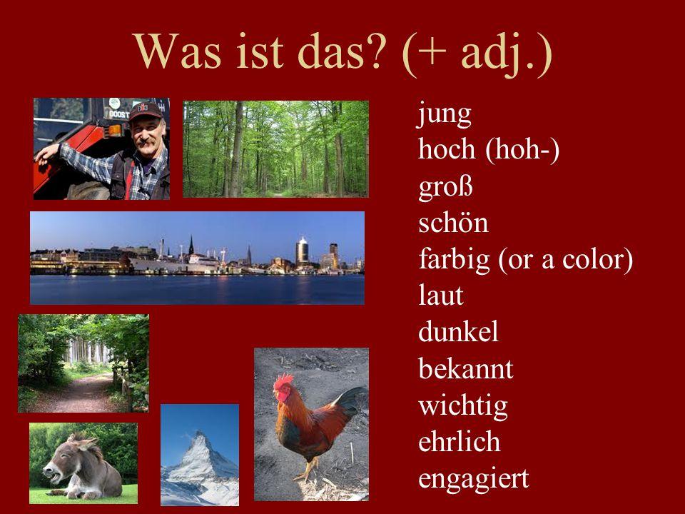 Der Norden Schleswig-Holstein Niedersachsen Hamburg Bremen, Bremerhaven Kiel Lübeck Oldenburg Hannover Göttingen Braunschweig