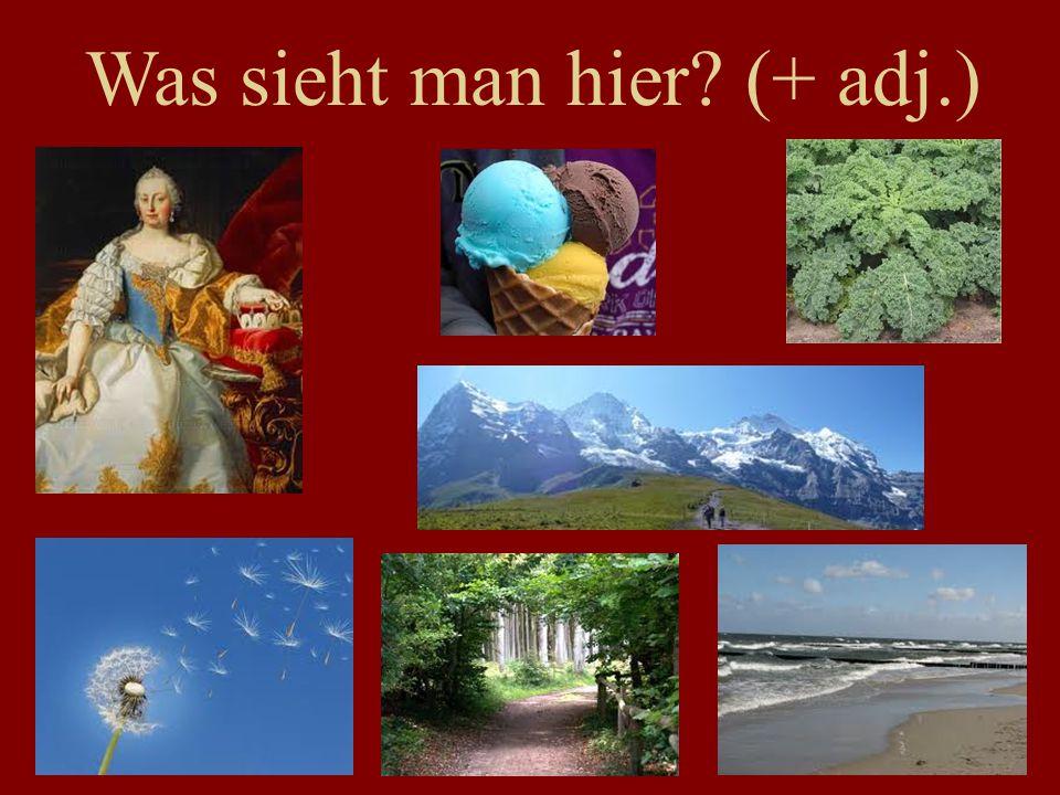 Norwegisch Schwedisch Dänisch Isländisch Englisch Friesisch Holländisch Afrikaans Niederdeutsch (Platt) Deutsch Yiddish