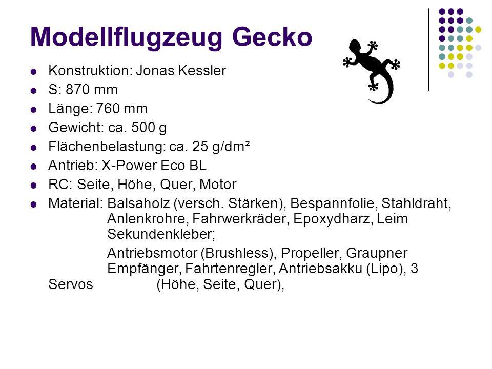 Modellflugzeug Gecko Konstruktion: Jonas Kessler S: 870 mm Länge: 760 mm Gewicht: ca. 500 g Flächenbelastung: ca. 25 g/dm² Antrieb: X-Power Eco BL RC: