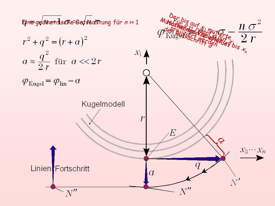a Für q << r darf a auf x 1 projiziert werden Mutation der Variablen x 2 bis x n Der bis auf x 1 mutierte Nachkomme N' erleidet den Rückschritt a Eine geometrische Betrachtung für n >> 1