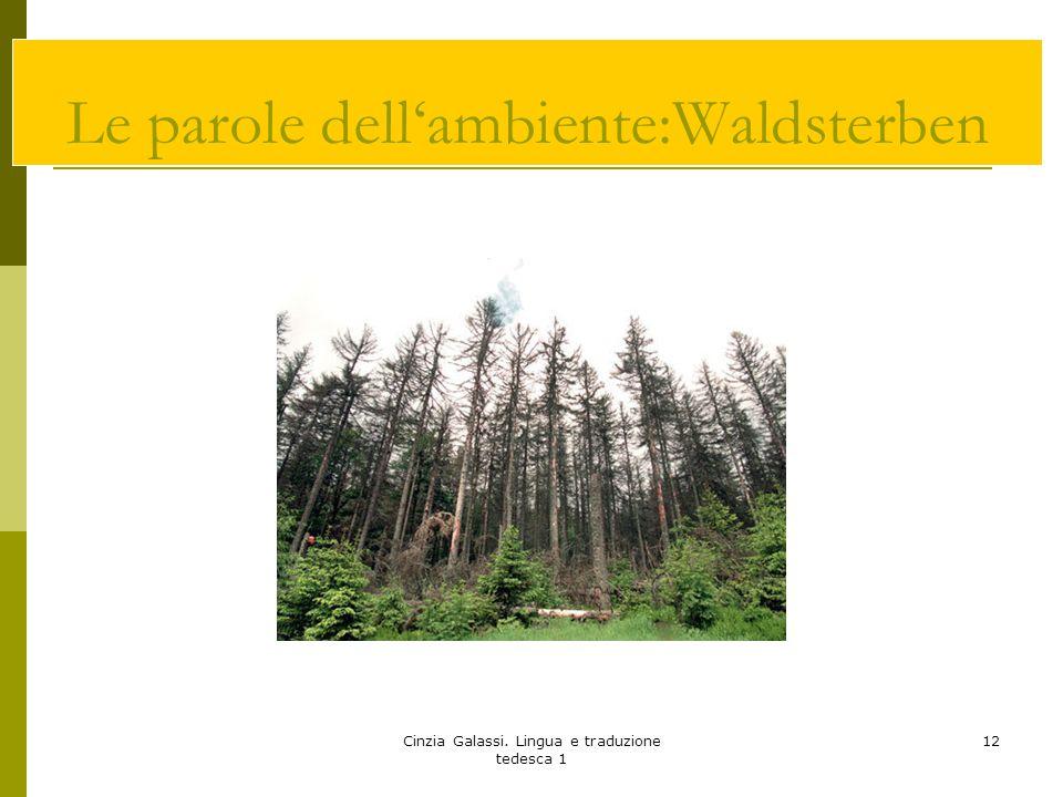 Cinzia Galassi. Lingua e traduzione tedesca 1 12 Le parole dell'ambiente:Waldsterben