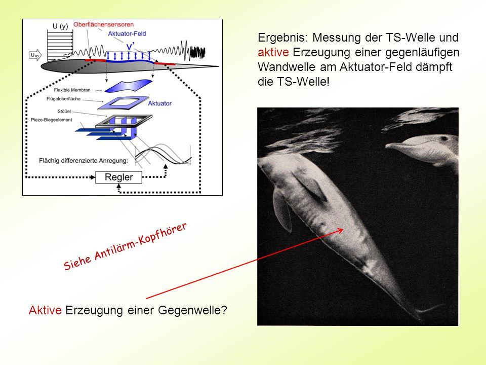 Ergebnis: Messung der TS-Welle und aktive Erzeugung einer gegenläufigen Wandwelle am Aktuator-Feld dämpft die TS-Welle.