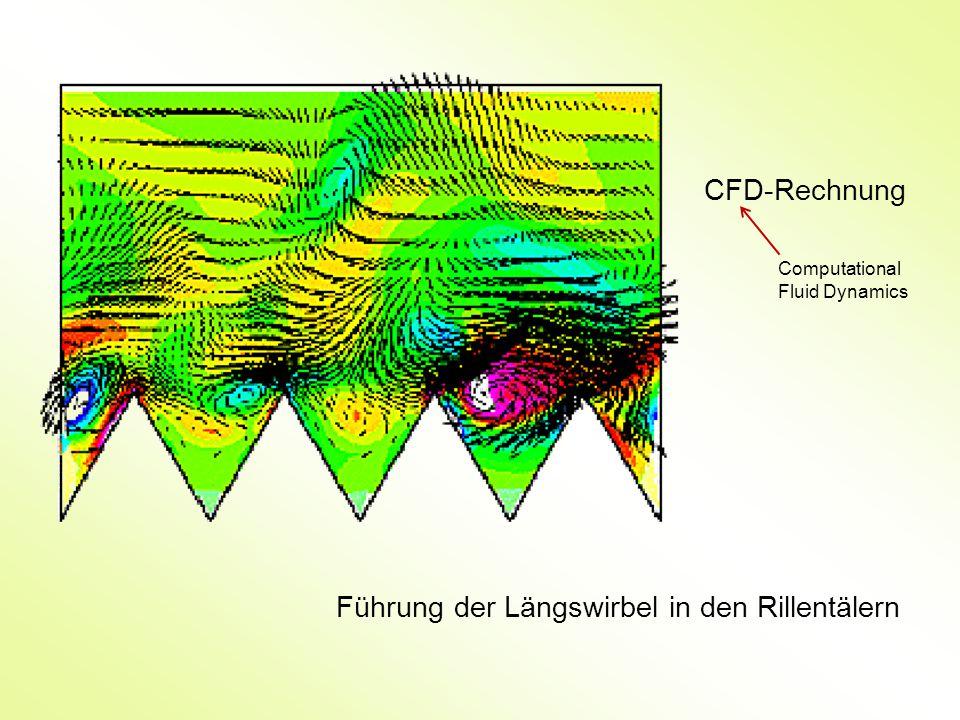 CFD-Rechnung Führung der Längswirbel in den Rillentälern Computational Fluid Dynamics