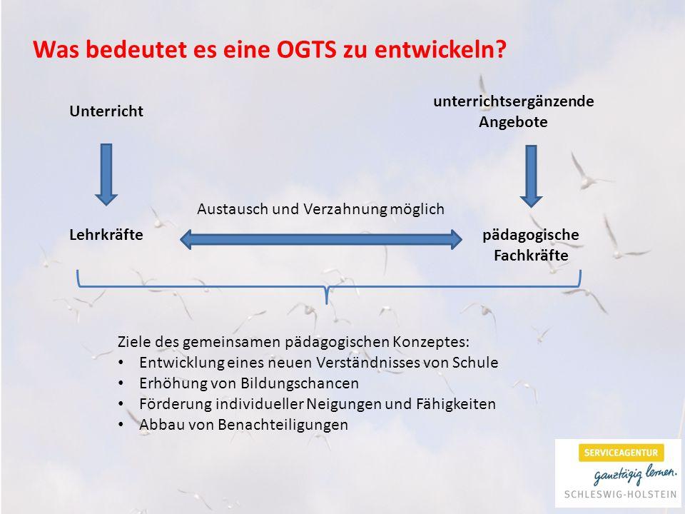 Was bedeutet es eine OGTS zu entwickeln.