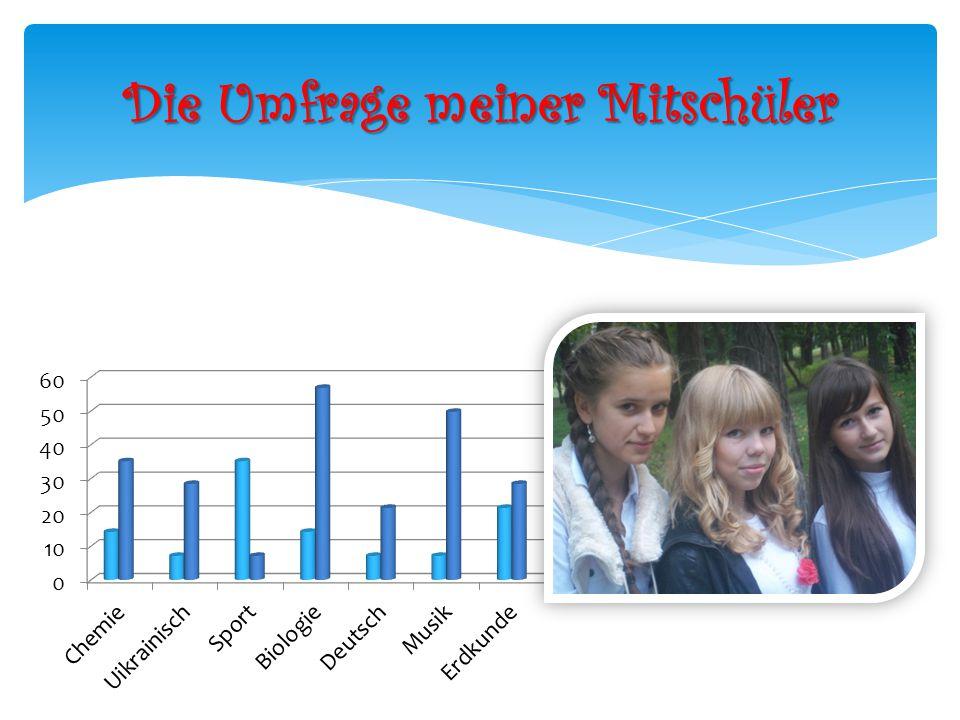 Die Umfrage meiner Mitschüler
