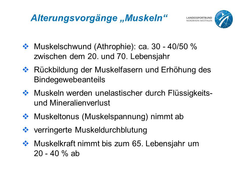 """Alterungsvorgänge """"Muskeln""""  Muskelschwund (Athrophie): ca. 30 - 40/50 % zwischen dem 20. und 70. Lebensjahr  Rückbildung der Muskelfasern und Erhöh"""