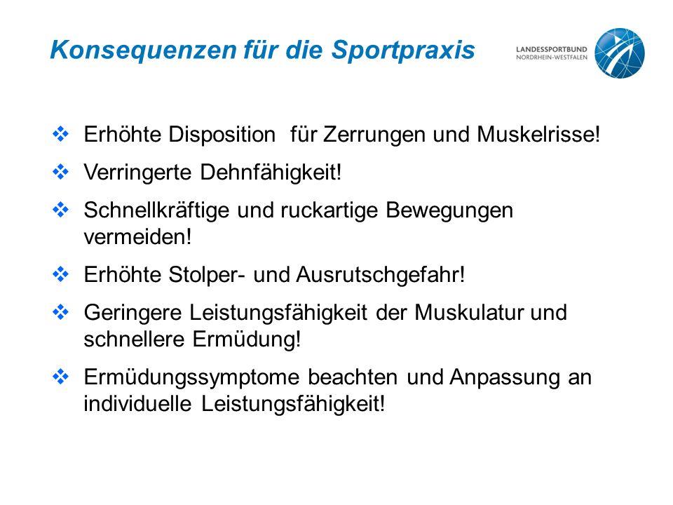 Konsequenzen für die Sportpraxis  Erhöhte Disposition für Zerrungen und Muskelrisse!  Verringerte Dehnfähigkeit!  Schnellkräftige und ruckartige Be