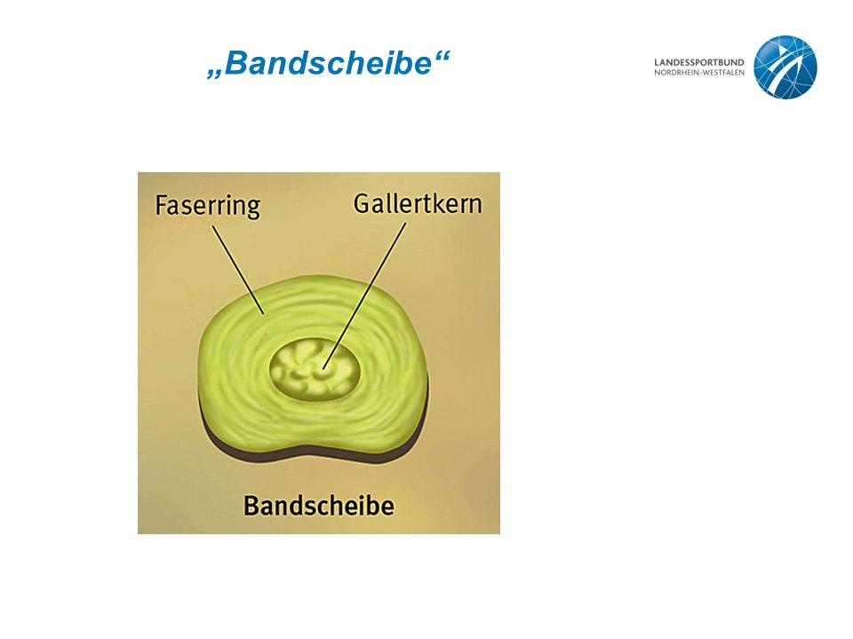 """""""Bandscheibe"""""""