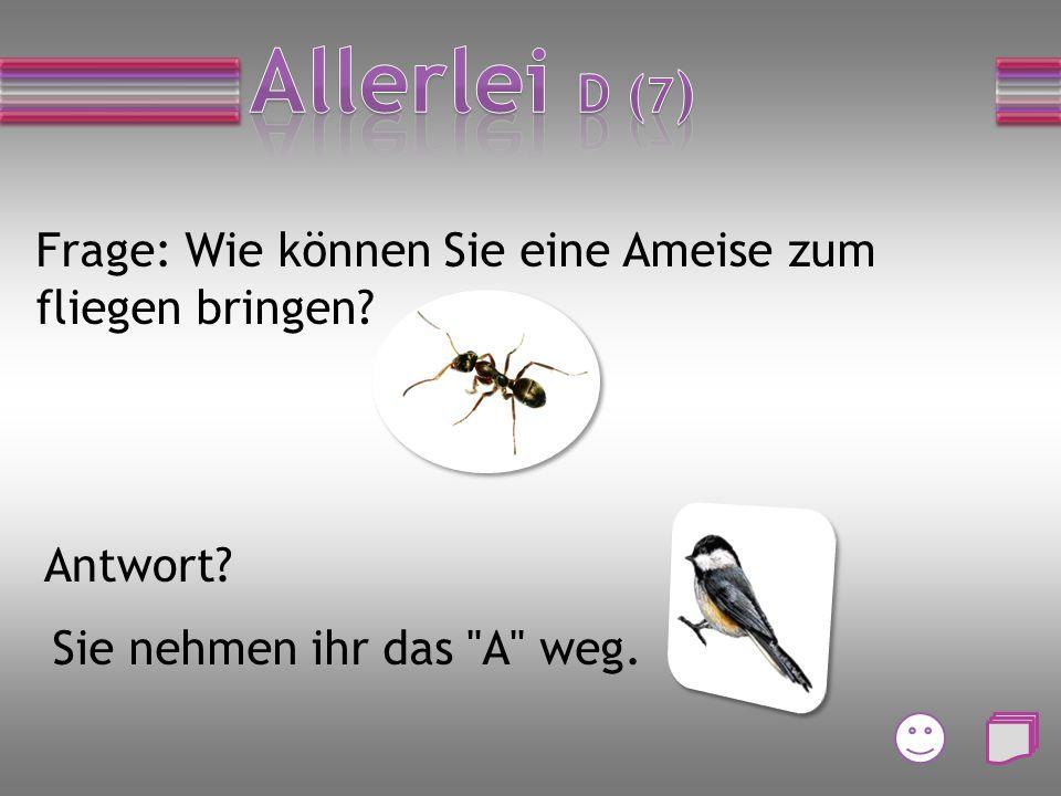 Frage: Wie können Sie eine Ameise zum fliegen bringen? Antwort? Sie nehmen ihr das A weg.