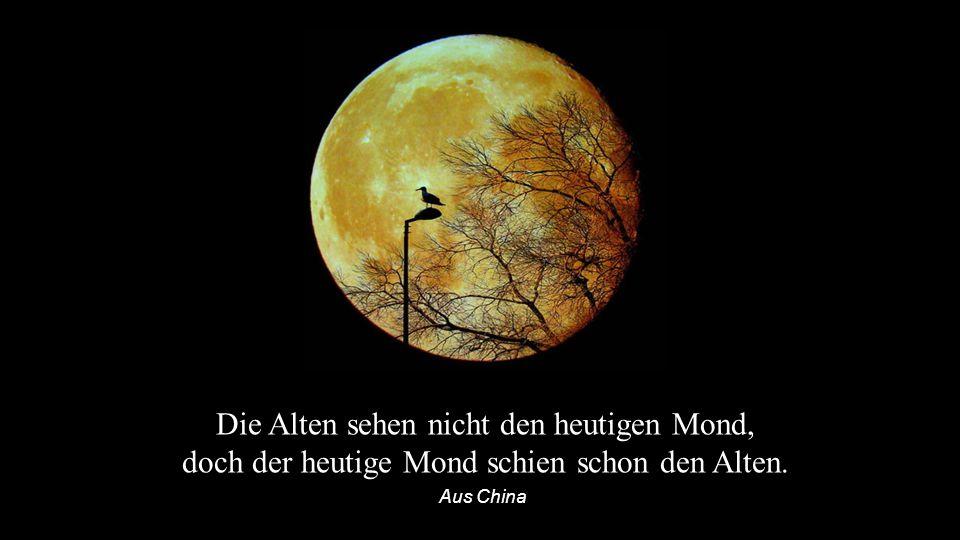 Wenn der Mond dir leuchtet, brauchst du nicht mehr nach den Sternen zu schielen. Aus Ägypten