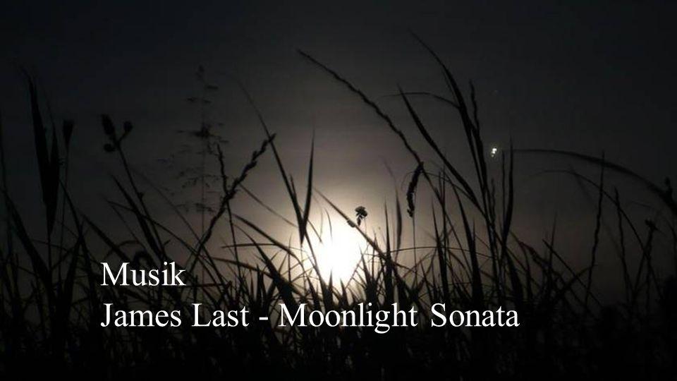 Die Sonne, der Mond und die Sterne wären schon lange verschwunden, wären sie in der Reichweite gieriger menschlicher Hände.