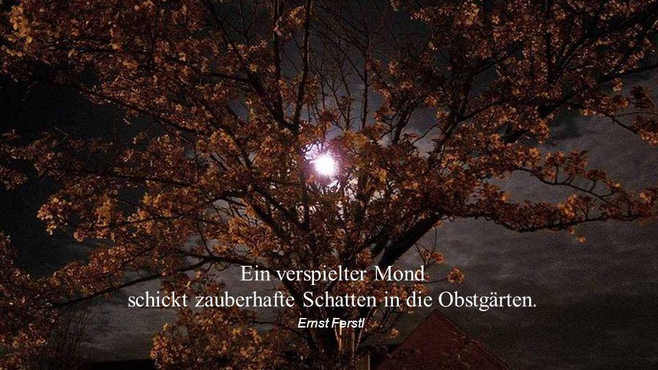 Der Mond ist uns viel näher als wir glauben. Besonders seine dunkle Seite. Ernst Ferstl