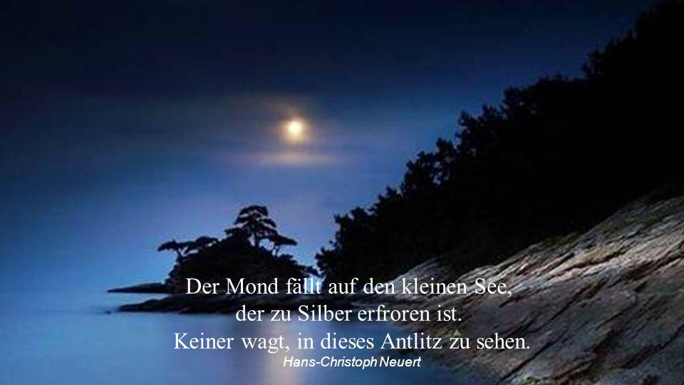 Wenn wir die Erde vom Mond aus betrachten, können wir unser Blaues Wunder erleben. Manfred Poisel
