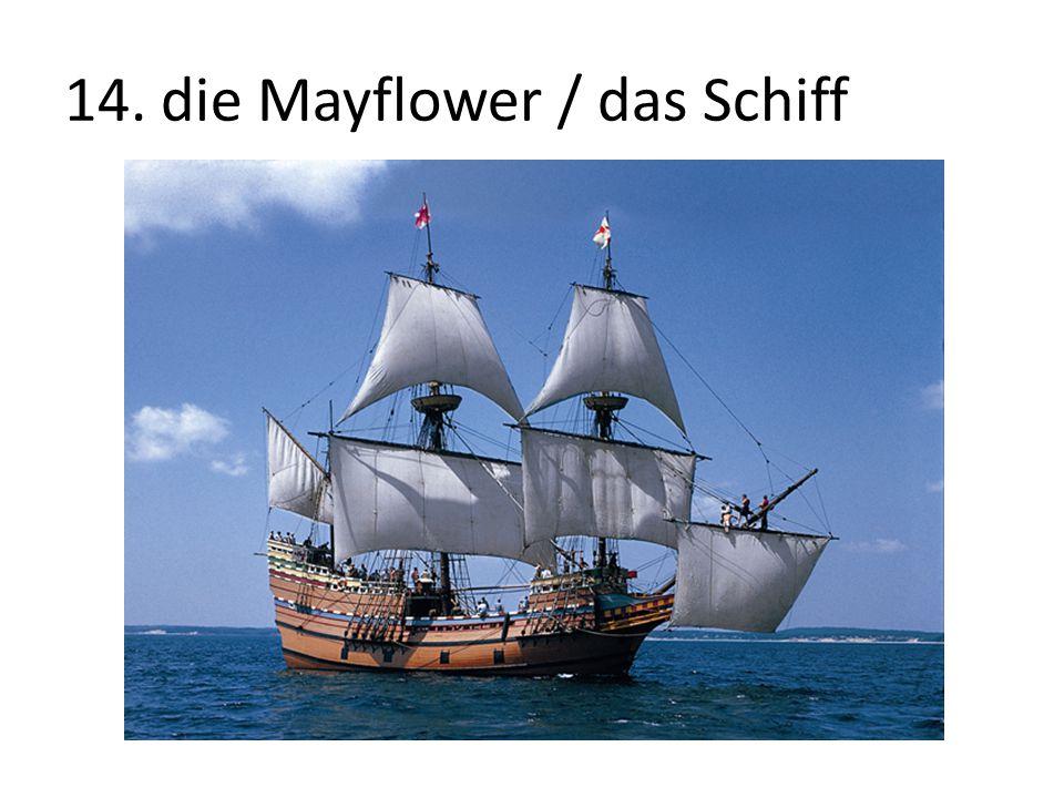 14. die Mayflower / das Schiff
