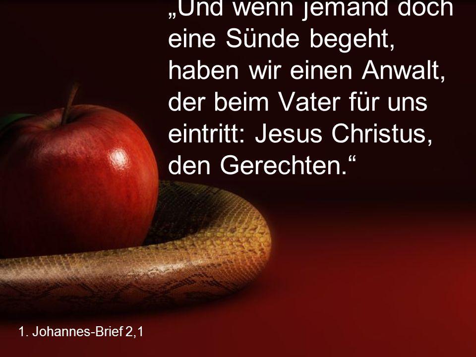 """1. Johannes-Brief 2,1 """"Und wenn jemand doch eine Sünde begeht, haben wir einen Anwalt, der beim Vater für uns eintritt: Jesus Christus, den Gerechten."""