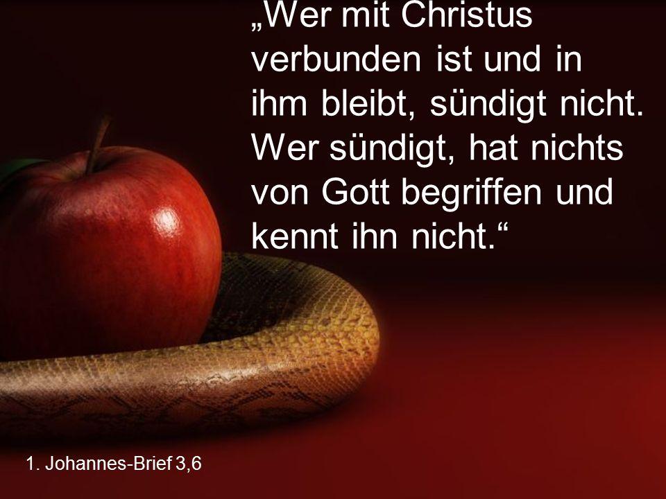 """1. Johannes-Brief 3,6 """"Wer mit Christus verbunden ist und in ihm bleibt, sündigt nicht. Wer sündigt, hat nichts von Gott begriffen und kennt ihn nicht"""