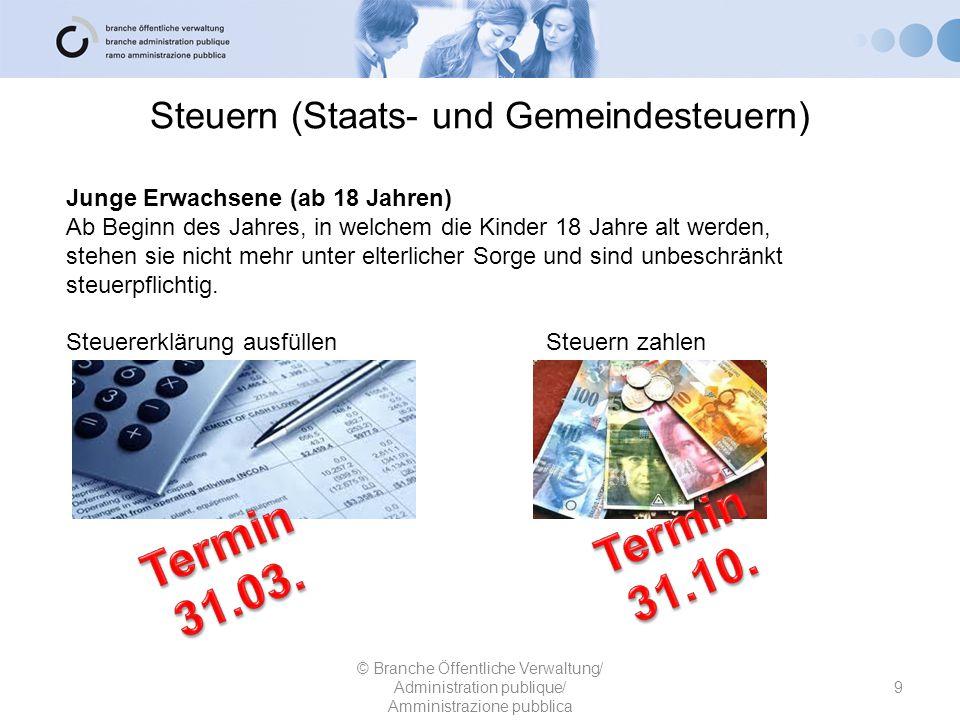 Steuern (Staats- und Gemeindesteuern) 9 © Branche Öffentliche Verwaltung/ Administration publique/ Amministrazione pubblica Junge Erwachsene (ab 18 Ja