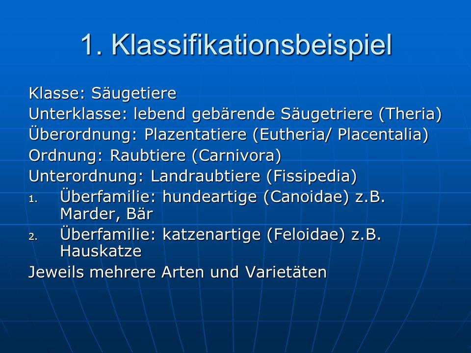 1. Klassifikationsbeispiel Klasse: Säugetiere Unterklasse: lebend gebärende Säugetriere (Theria) Überordnung: Plazentatiere (Eutheria/ Placentalia) Or