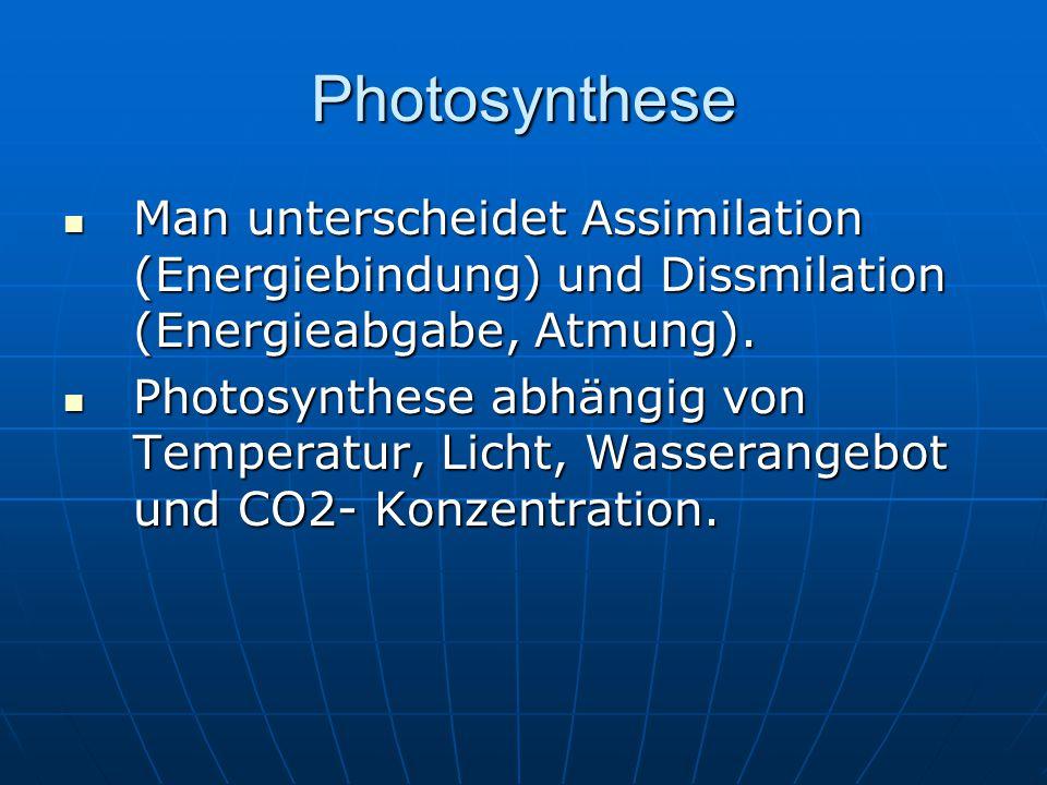 Photosynthese Man unterscheidet Assimilation (Energiebindung) und Dissmilation (Energieabgabe, Atmung). Man unterscheidet Assimilation (Energiebindung