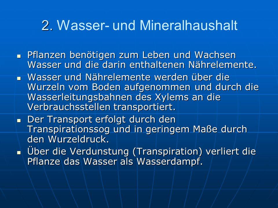 2. 2. Wasser- und Mineralhaushalt Pflanzen benötigen zum Leben und Wachsen Wasser und die darin enthaltenen Nährelemente. Pflanzen benötigen zum Leben