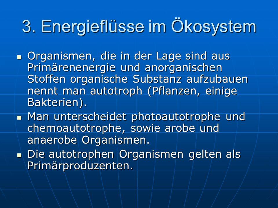 3. Energieflüsse im Ökosystem Organismen, die in der Lage sind aus Primärenenergie und anorganischen Stoffen organische Substanz aufzubauen nennt man