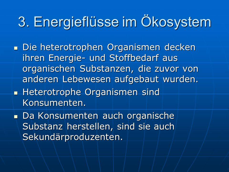 3. Energieflüsse im Ökosystem Die heterotrophen Organismen decken ihren Energie- und Stoffbedarf aus organischen Substanzen, die zuvor von anderen Leb