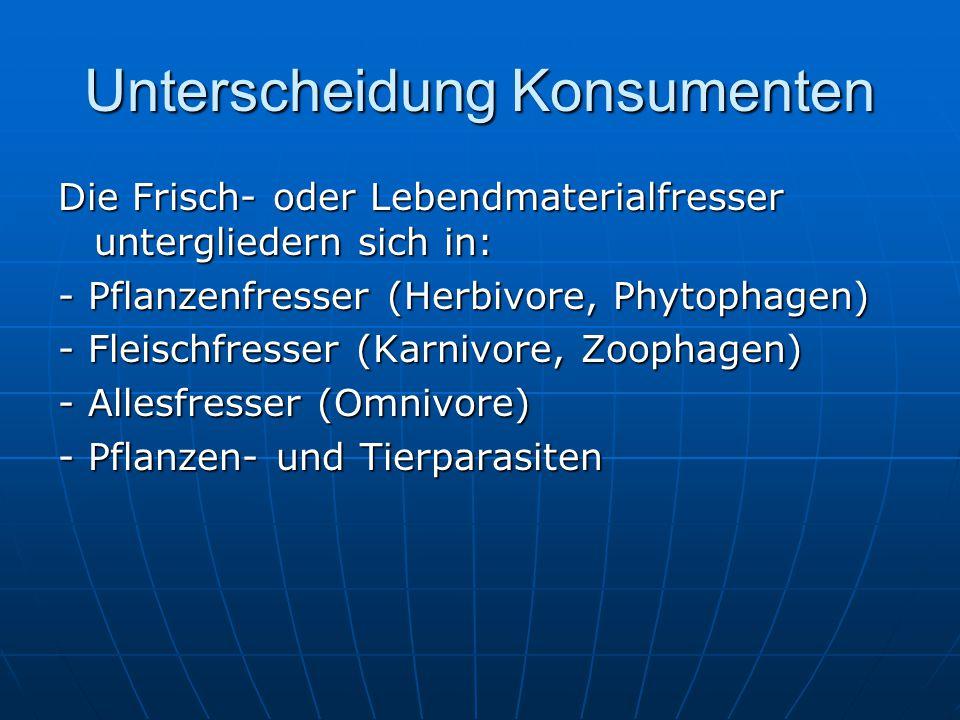 Unterscheidung Konsumenten Die Frisch- oder Lebendmaterialfresser untergliedern sich in: - Pflanzenfresser (Herbivore, Phytophagen) - Fleischfresser (