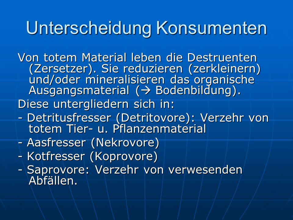Unterscheidung Konsumenten Von totem Material leben die Destruenten (Zersetzer). Sie reduzieren (zerkleinern) und/oder mineralisieren das organische A
