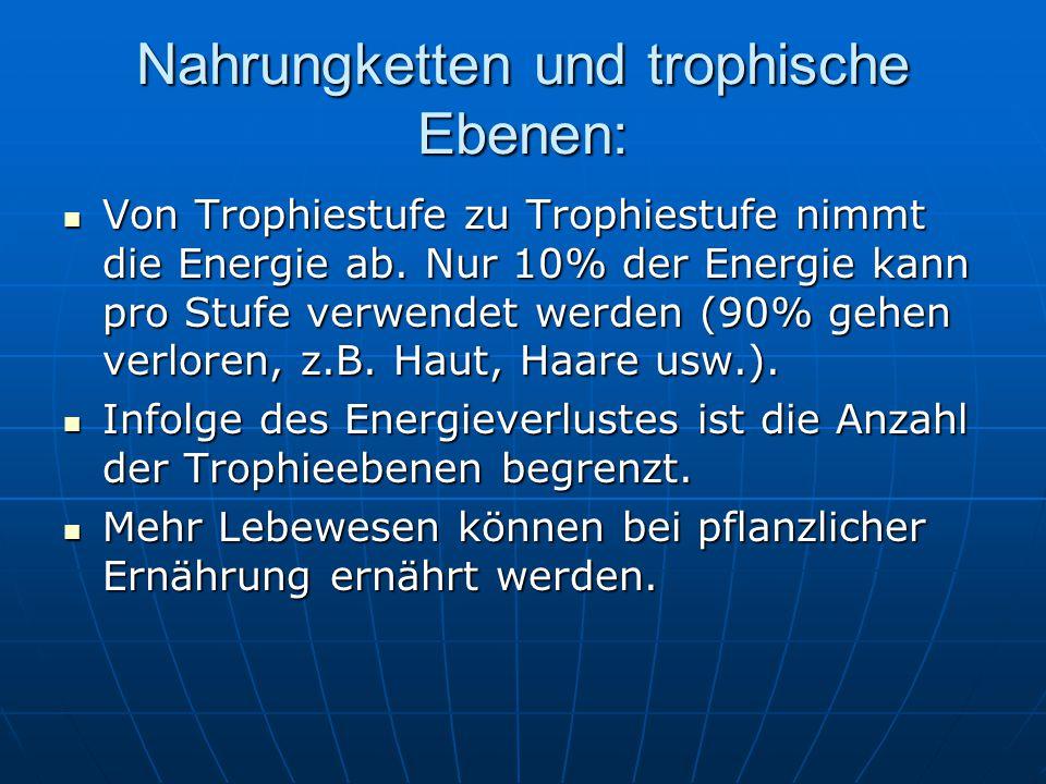 Nahrungketten und trophische Ebenen: Von Trophiestufe zu Trophiestufe nimmt die Energie ab. Nur 10% der Energie kann pro Stufe verwendet werden (90% g