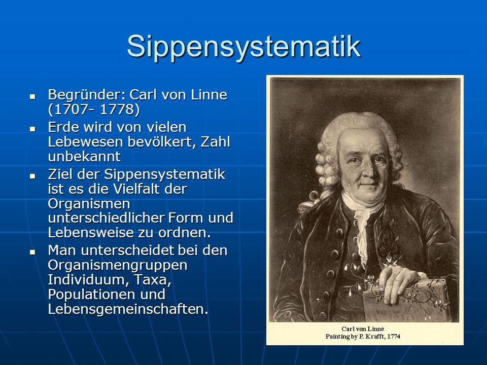 Sippensystematik Individuum: unteilbare, selbstständig lebende Einheit Individuum: unteilbare, selbstständig lebende Einheit Taxa (Einzahl Taxon): entspricht der Sippe (systematische Einheit jeder Rangstufe).