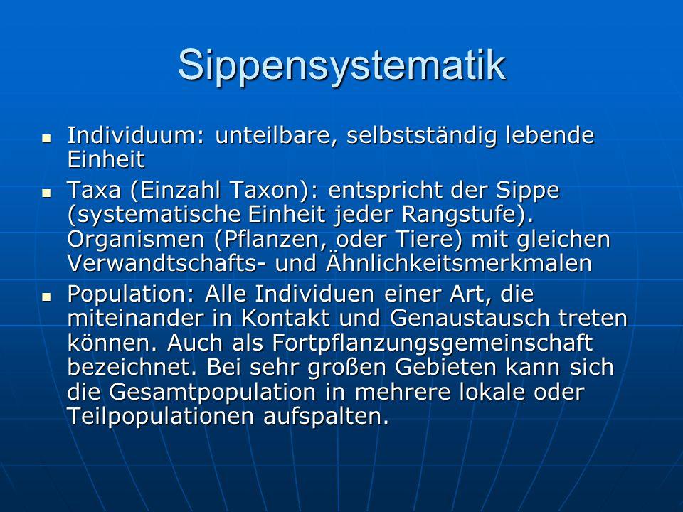Sippensystematik Individuum: unteilbare, selbstständig lebende Einheit Individuum: unteilbare, selbstständig lebende Einheit Taxa (Einzahl Taxon): ent