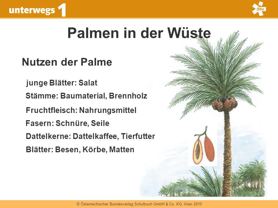 © Österreichischer Bundesverlag Schulbuch GmbH & Co. KG, Wien 2015 Palmen in der Wüste junge Blätter: Salat Nutzen der Palme Stämme: Baumaterial, Bren