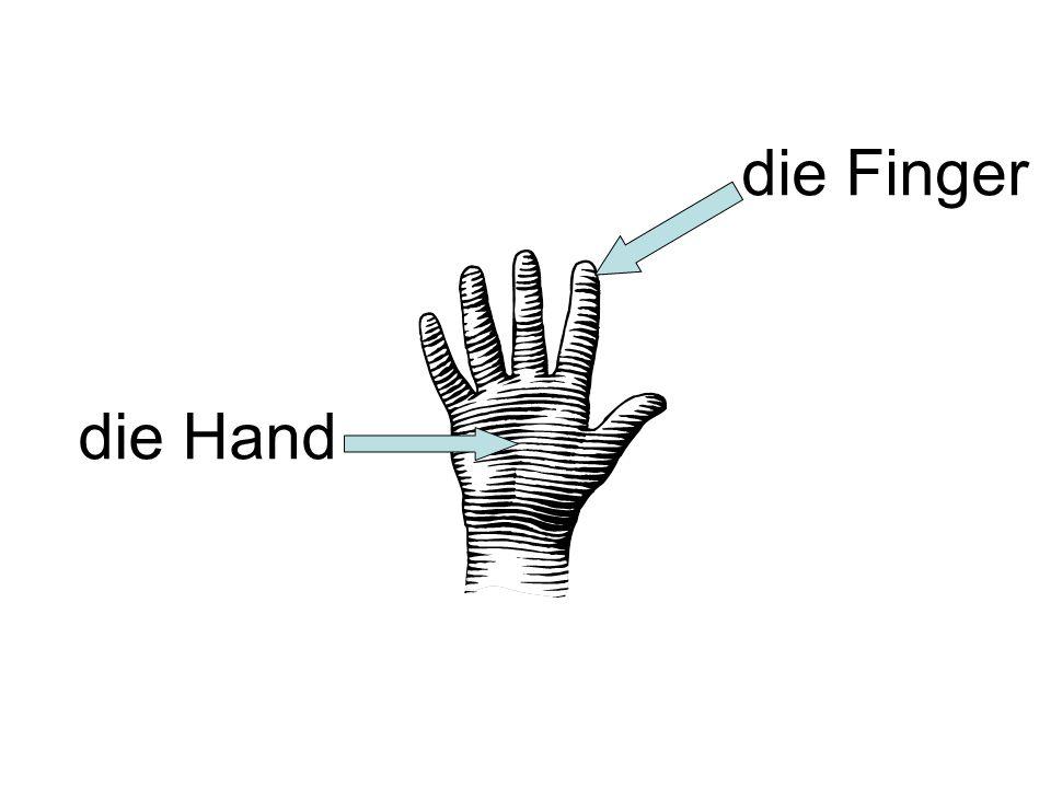 die Hand die Finger