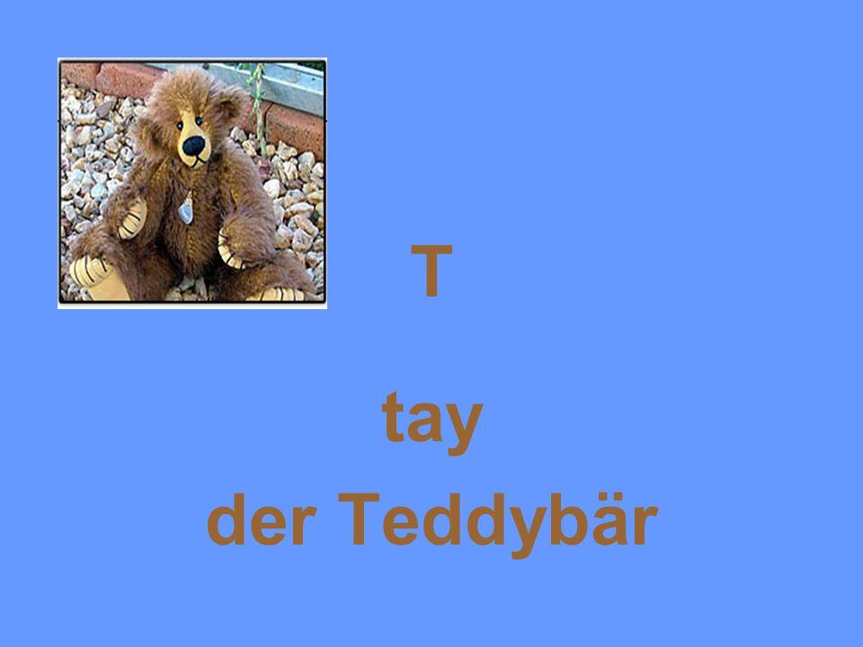 T tay der Teddybär