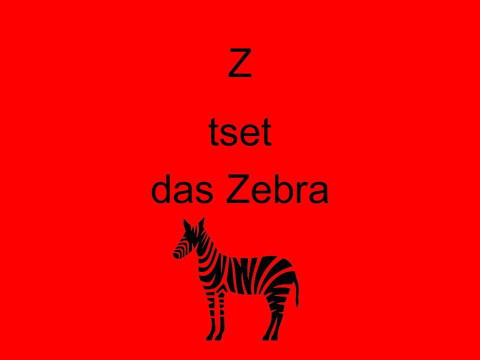 Z tset das Zebra