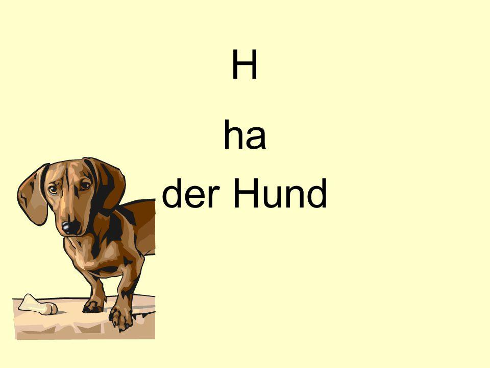 H ha der Hund