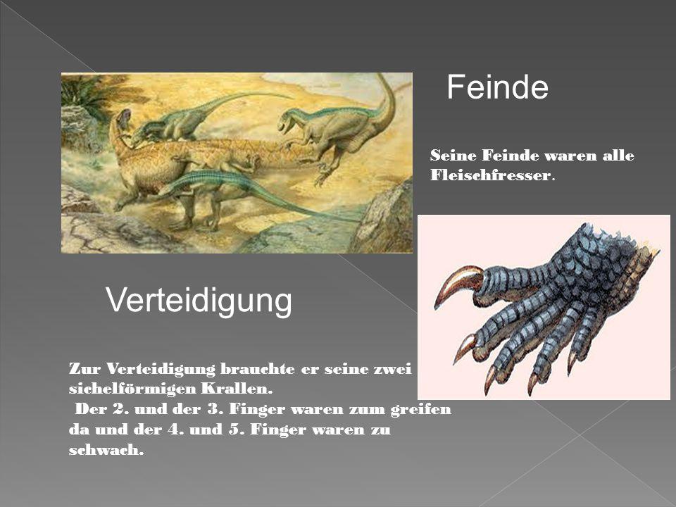 1978 endeckten Paläontologen in Südafrika Eier des Massospondylus.