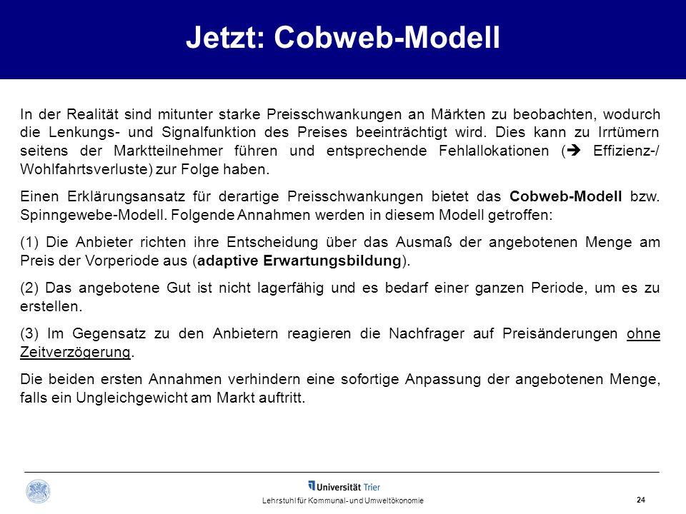 Jetzt: Cobweb-Modell 24 Lehrstuhl für Kommunal- und Umweltökonomie In der Realität sind mitunter starke Preisschwankungen an Märkten zu beobachten, wo