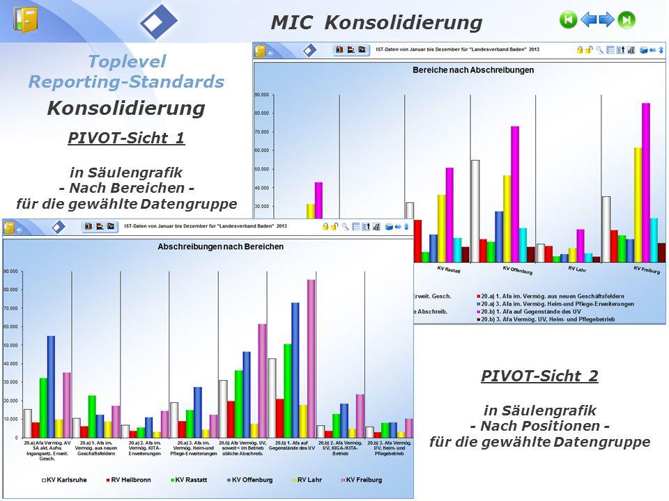 Toplevel Reporting-Standards Konsolidierung PIVOT-Sicht 1 in Säulengrafik - Nach Bereichen - für die gewählte Datengruppe PIVOT-Sicht 2 in Säulengrafik - Nach Positionen - für die gewählte Datengruppe MIC Konsolidierung